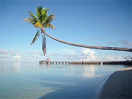 Wakatobi island fact you don't know