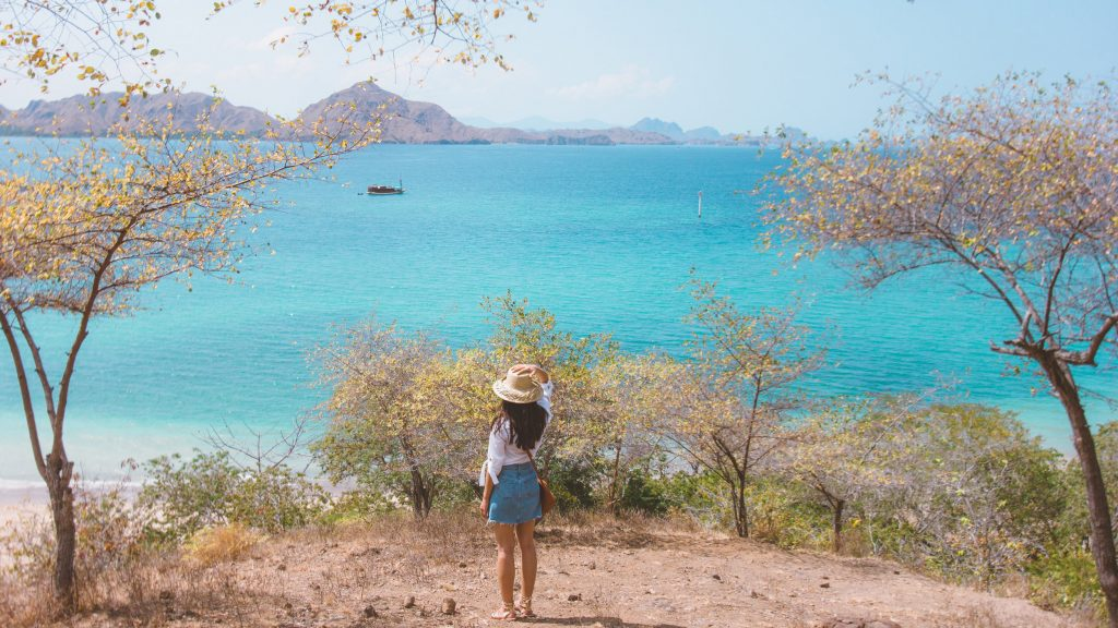 An Expert Tips to Do Before Going to Komodo Island